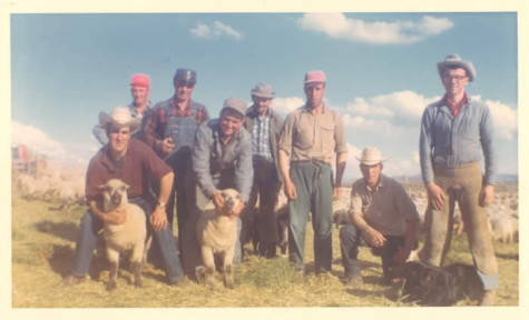 Early Etcheverry sheep ranch workers