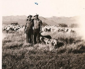 Jean Baptiste Zubiri (on right) sheepherding in the U.S.